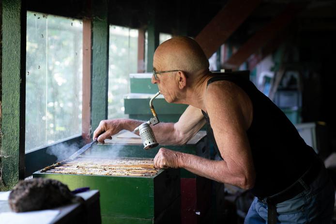 Imker Joop Koopman uit Bemmel brengt de bijen met rook tot rust. ,,Ze denken dat er een bosbrand in de buurt is en eten hun buikje vol. Dan steken ze niet meer.''