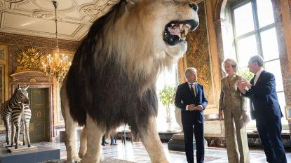 Koning komt niet naar opening AfricaMuseum