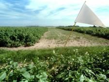 Code rood op het aardappelveld; problemen met de pieper stapelen zich op
