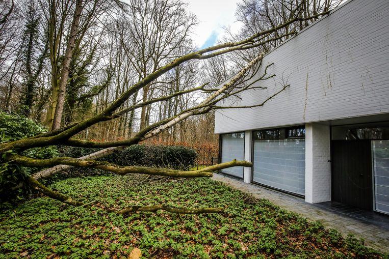stormschade in de Doornstraat Brugge