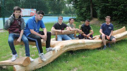 Leerlingen GO! maken hippe zitbank van omgevallen boom (en plaatsen ze aan sporthal Jo Baetens)