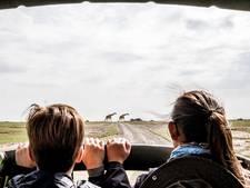 Waarom je met je kinderen een safari moet maken