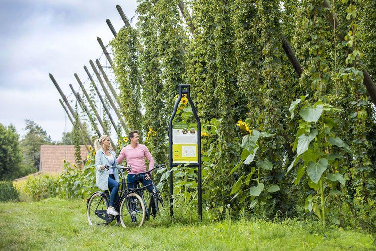 St.Bernardus start met fietsverhuur zodat je de streek nog makkelijker kunt ontdekken vanuit de brouwerij.