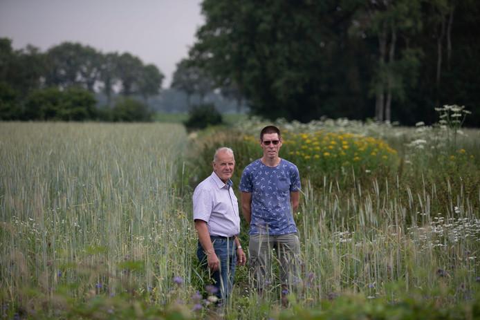 Wim Walen (l) en Piet Peijs in het gebied dat speciaal werd ingericht voor de patrijs.
