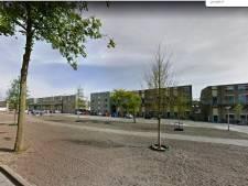 Gemeente bezweert: bomen Rijtuigweg niet dood