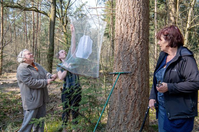 LEMELERVELD -  Helma van den Brink  (l) en Camille Smid (m) helpen kunstenares Elisa van den Berg met het ophangen van grote spinnenwebben.