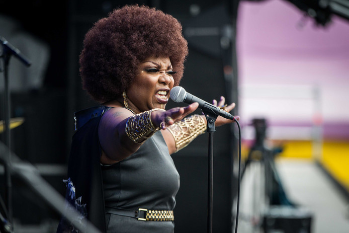 De Amerikaanse soulzangeres Michelle David.