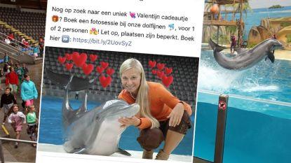 """Boudewijn Seapark onder vuur door fotoshoot met dolfijnen: """"Stop dit soort circusacts"""""""