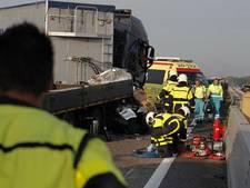 Dodelijke sandwich tussen vrachtauto's op A59 bij Oosterhout,  eis is taakstraf
