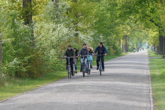 Schoolgaande fietsers, elders in Nederland.