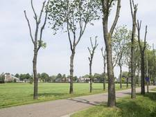 Aanleg fietspad Den Ham vertraagd door stroeve onderhandelingen
