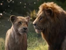 Filmrecensie: The Lion King is beter dan de echte natuur