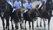 Jaarlijkse traditie wordt niet onderbroken: ruiterommegang in Nukerke ondanks coronacrisis