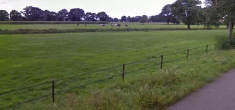 Gemeente Hardenberg wijst plan voor herbouw oliemolen in Brucht af