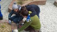 Leefboerderij De Kanteling en de KRIK-bouwers werken verder aan speelplaats