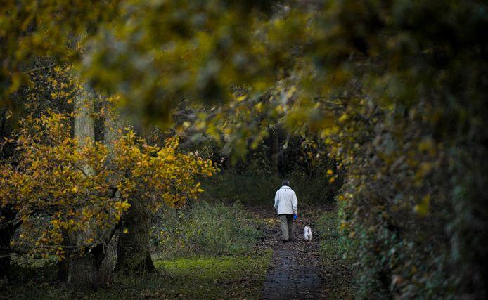 Het wandelpad in de Boswachterij Westerschouwen wordt keurig vrij gehouden van hondendrollen. Maar sommige baasjes gooien het plastic opruimzakje vervolgens tussen de bomen weg.