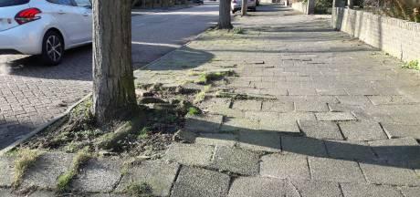 Begroting: Breda weer iets duurder voor de Bredanaars