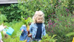 VIDEO. Welkom in de gezondste kinderopvang van Vlaanderen, waar peuters hun middagmaal zelf oogsten en i-Pads verboden zijn