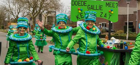 Uitslag optocht Stiphout 2017