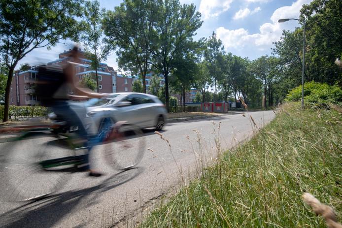 Een fietser en een automobilist op de Haarweg in Wageningen.