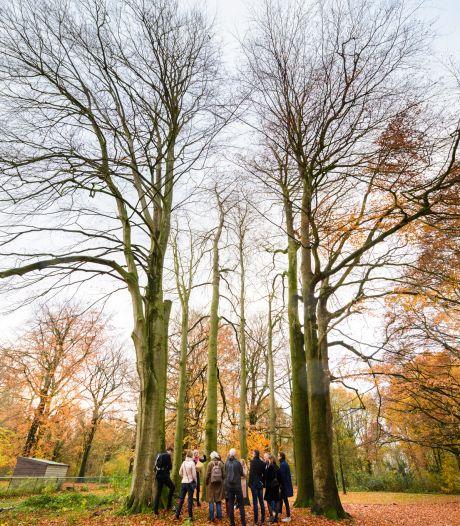 Lobke Meekes zoekt voor Assisië in Biezenmortel bomen die een verhaal vertellen