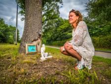 Joanne heeft een stukje van de boom waar Otto tegenop reed bewaard : 'Zie elke ochtend zijn lachende gezicht'
