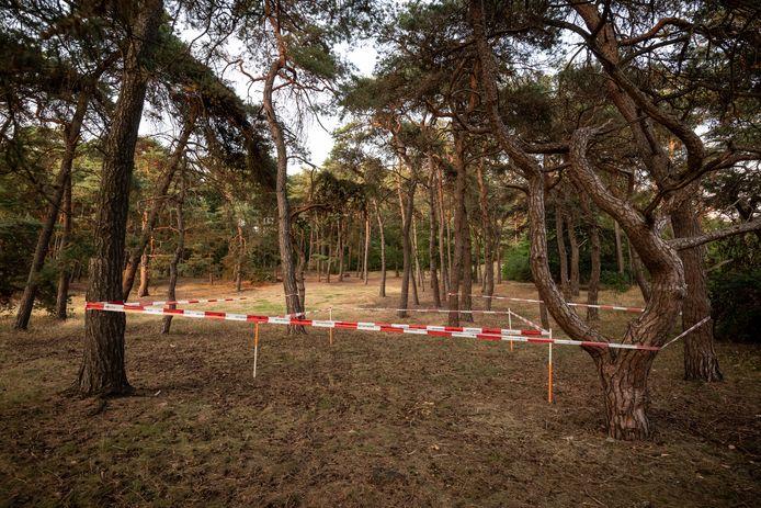 Vandaag werd gekeken op de plaats waar de tent van Nicky Verstappen in 1998 stond.