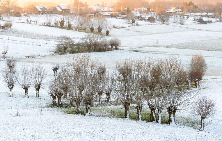 In de Ardennen kunnen de buien opnieuw winters van karakter worden met tijdelijk wat sneeuw op de toppen.