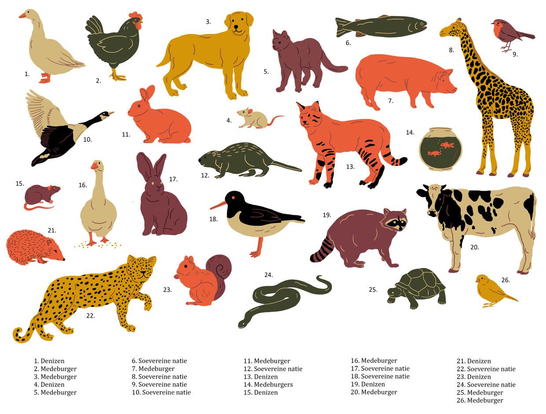 Gedomesticeerde dieren, die generatieslang zijn gefokt en afhankelijk van ons zijn, kunnen in de filosofie van Donaldson en Kymlicka worden beschouwd als medeburgers.
