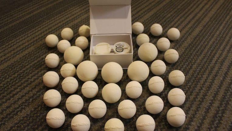 Ei Voor In De Tuin.3d Geprinte Eieren Moeten Schildpaddenstropers Om De Tuin Leiden