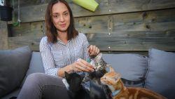 """Marissa (28) wil kattencafé openen in Hasselt: """"Ik wil een huiselijke sfeer creëren. Alle soorten katten en mensen zijn hier welkom"""""""