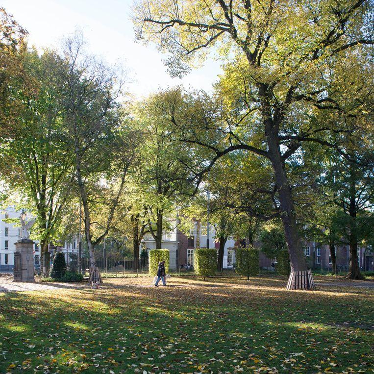 Wertheimpark Beeld Charlotte Odijk