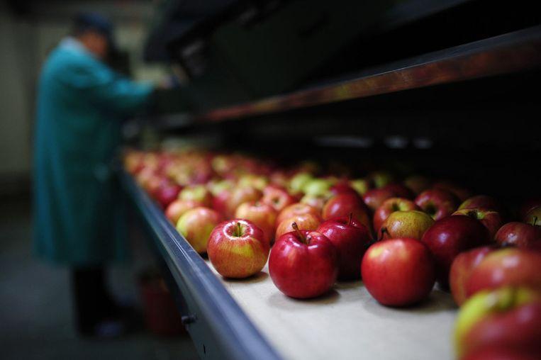Appels in een fabriek bij het Russische Grojec. Beeld reuters