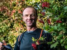 Biodiversiteit in Salland versterkt met aangelegde glooiing: 'Een eenvoudig idee dat heel mooi kan uitpakken'