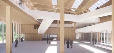 Ingenieuze vernieuwbouw Willem II-college: de koning krijgt een houten kroon