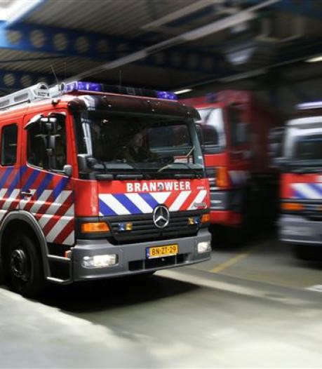 Transportsector betaalde voor 1,2 miljard euro te veel aan trucks