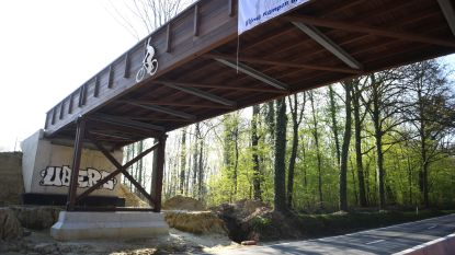Houten fietsers- en voetgangersbrug nog niet klaar en al beklad