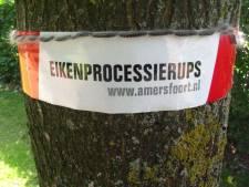 Soest: waarschuwingslinten voor eikenprocessierups trekken juist kinderen aan
