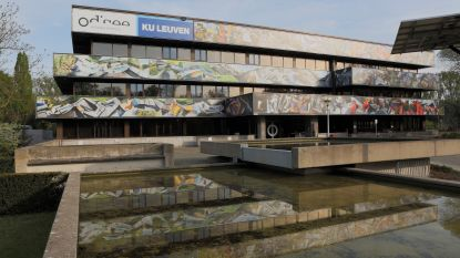 Kunstenaar Gilles Van Schuylenbergh maakt werk van 1.100m² voor hogeschool Odisee
