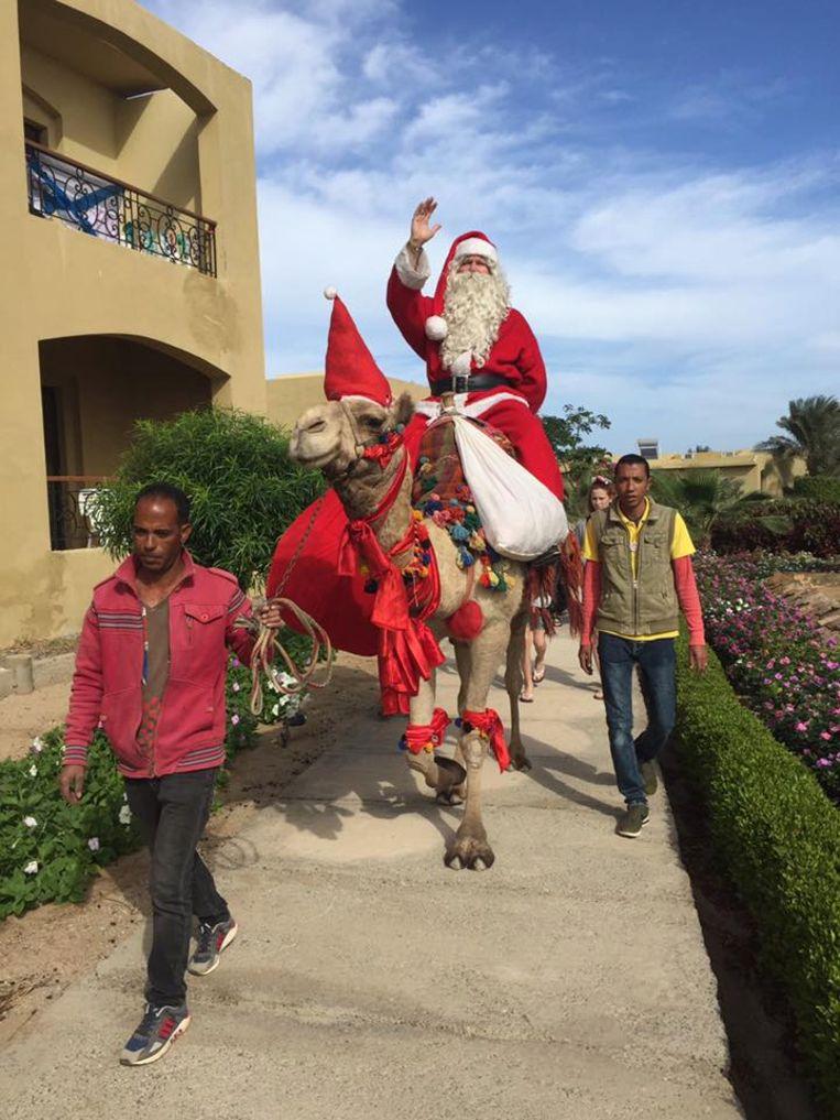 Koen Hallaert wordt in Egypte op handen gedragen
