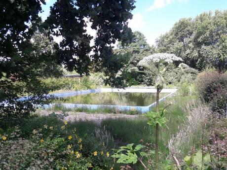 Hardinxvelds buitenbad mogelijk in de zomer van 2012 weer open