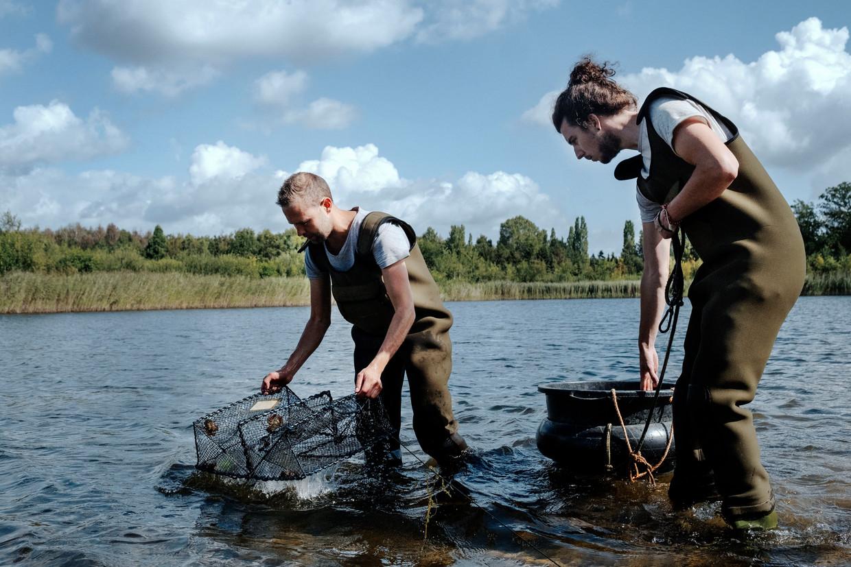 De vangst van Californische rivierkreeften door Pim Lemmers (l) en  Joris Verhees.