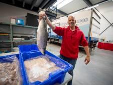 Visboer op markt in Vriezenveen heeft nu ook bedrijfshal in Twente