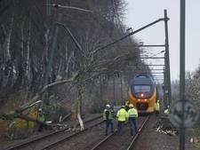Boom valt op bovenleiding: treinverkeer tussen Goes en Vlissingen plat