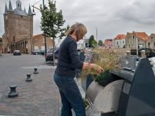 Online inzicht over scheiden van afval en kosten voor inwoners Schouwen-Duiveland