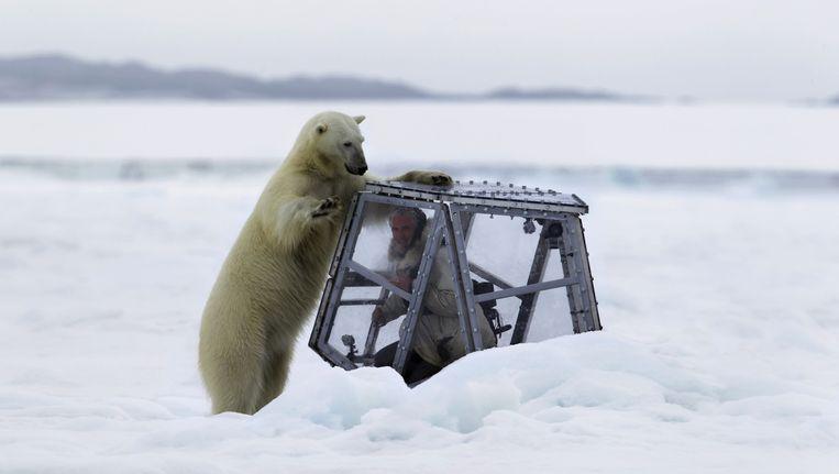 Gedurende drie jaargetijden volgt natuurfilmer Gordon Buchanan een ijsbeermoeder en haar twee jongen. Beeld EO