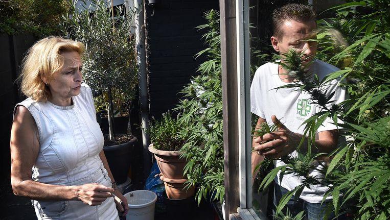 Marian Hutten en Serge de Bruijn in hun Tilburgse tuintje voor medicinale wiet. Beeld Raymond Rutting