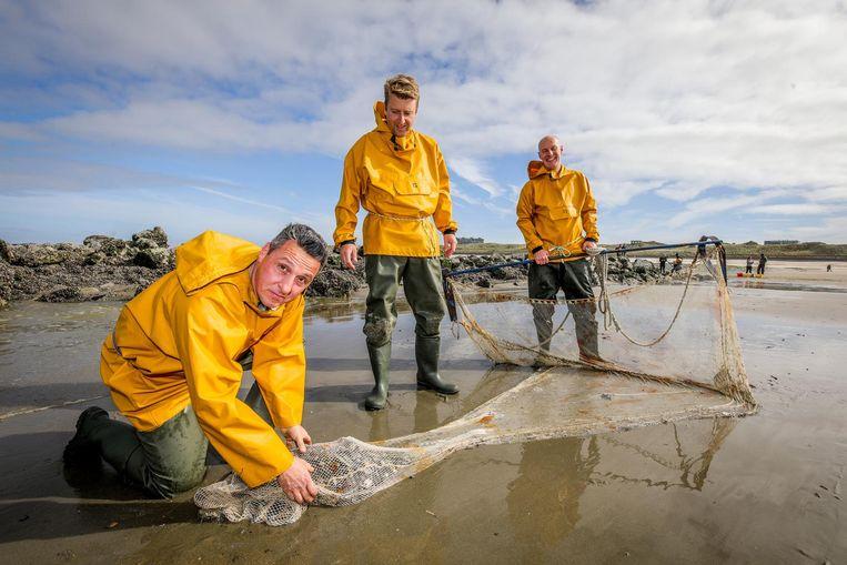 De chefs Michiel Rabaey (STORM), Tom Vanhaecke (Du Bassin) en Luc Declerck (Bistro Mathilda) zoeken naar schelp- en schaaldieren en garnaalkruien voor een filmpje op Food'O.