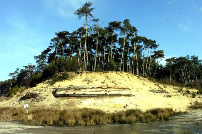 Als gevolg van de zandafgravingen in Groeve Boudewijn is goed zichtbaar geworden hoe de Brabantse Wal is ontstaan. Binnenkort wordt duidelijk of de plek behouden blijft. foto archief bn destem