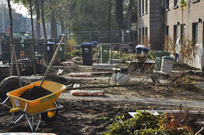 Bestrating eruit, planten erin, tijdens een vergroeningsdag in Nijmegen in het kader van Operatie Steenbreek.